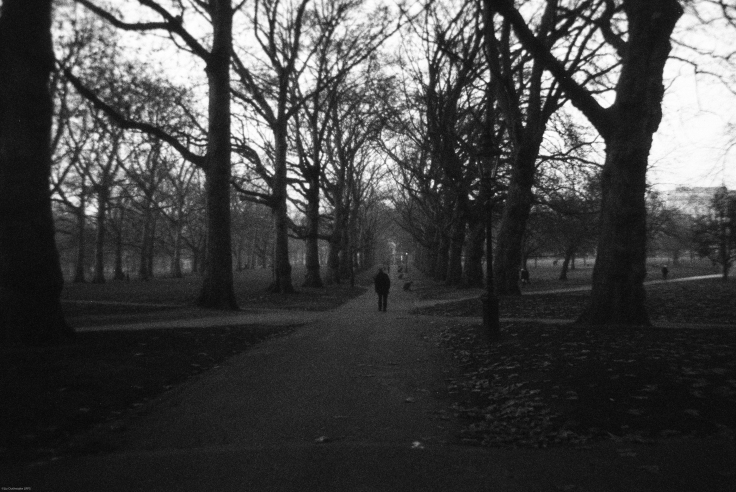 A dark afternoon in St James's Park